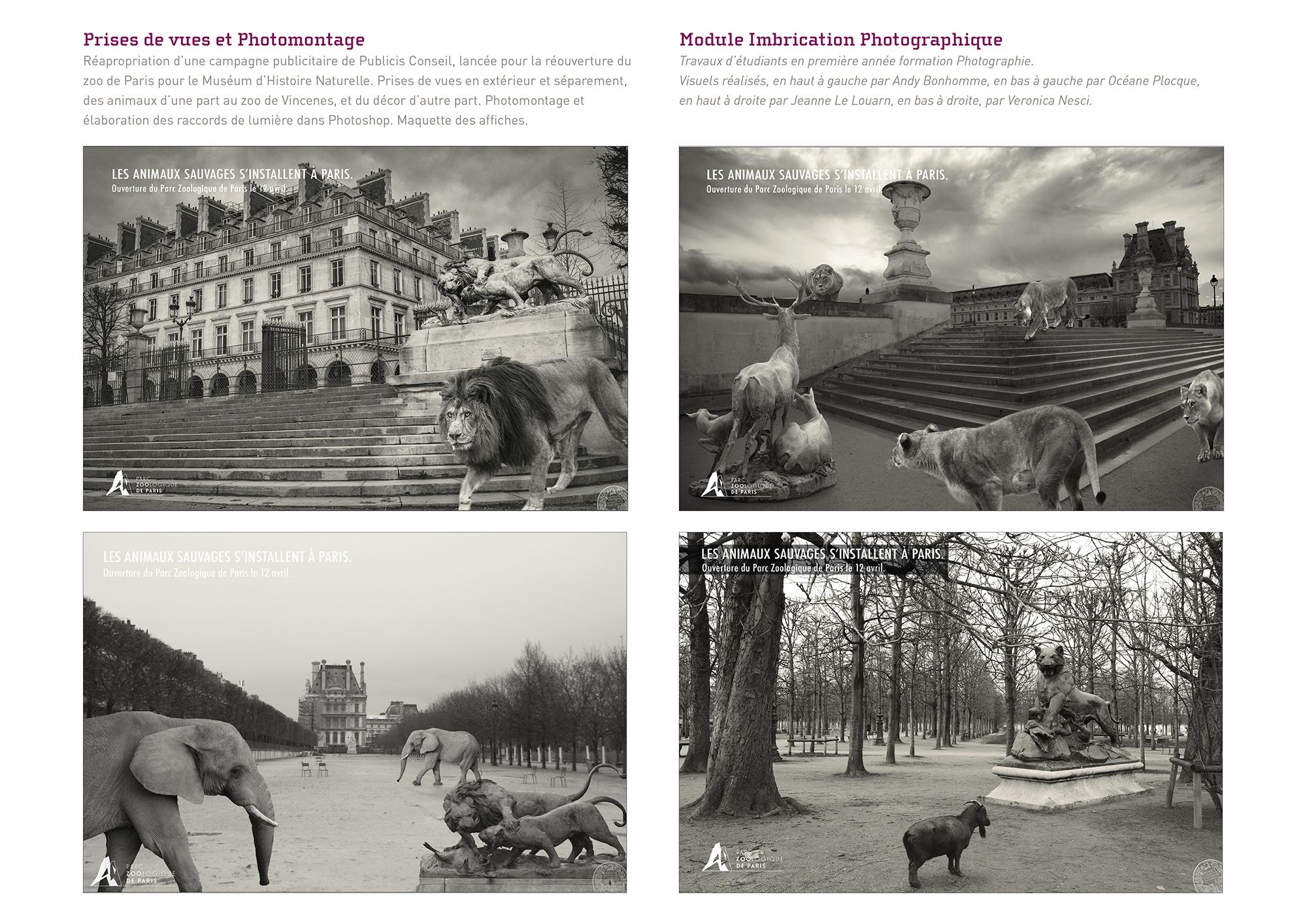 07-Travaux-etudiants-en-formation-photographie-Campagne-Publicitaire-MNHN