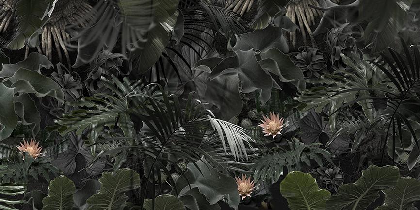 AudeVINCENT_Sol jungle_humus copie